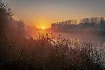 Sonnenaufgang am Bach, von Wesley Kole