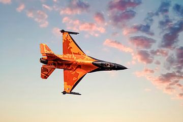 F16 Kampf gegen den Falken, Niederlande von Gert Hilbink