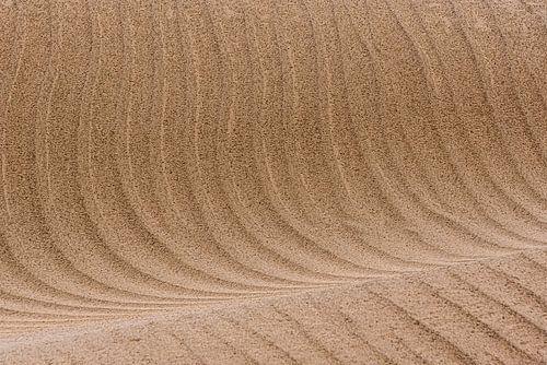 Lijnen van een zandduin in de woestijn | Iran