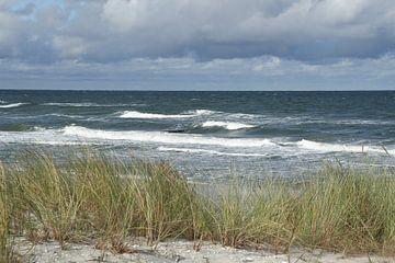 Fischland-Darss-Zingst: Op het strand van Anja Bagunk
