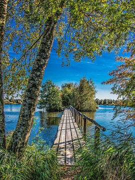 Bruggetje in het natuurpark De Deelen in Friesland sur Harrie Muis
