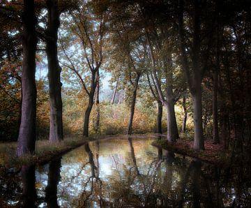 Ombres dans un miroir sur Kees van Dongen
