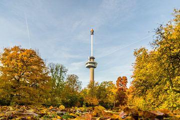 Euromast omgeven met herfstkleuren van Tony Buijse