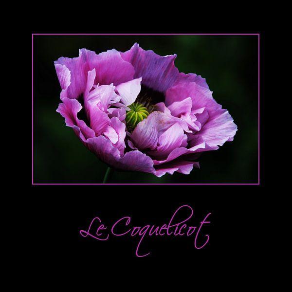 Purple and Proud van Yvonne Blokland
