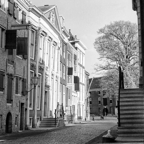 Dordrecht, Houttuinen van