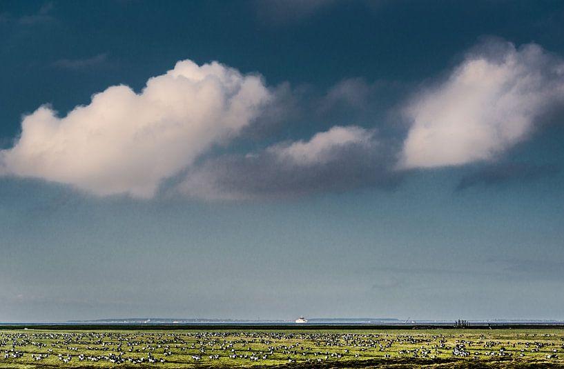 Noorderleech met ganzen van Harrie Muis