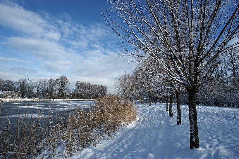 Echt Hollands winterweer met sneeuw en een helder zonnetje. van Gert van Santen