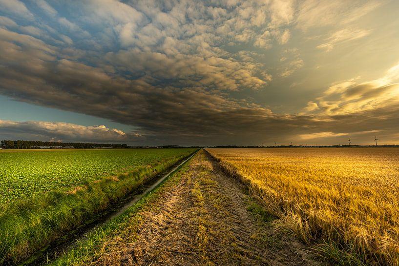 Nederlandse zonsondergang  Noordoostpolder van Martien Hoogebeen Fotografie