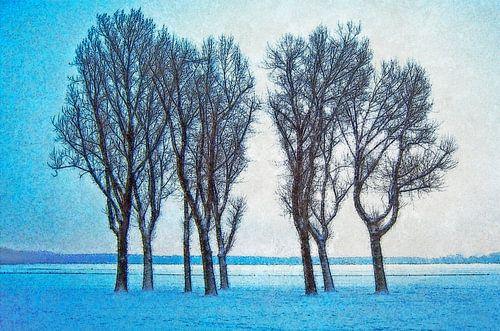 Winterbeeld Kralingse Plas