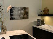 Photo de nos clients: Pissenlit près sur Ricardo Bouman, sur toile