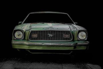 Rusty Mustang van marco de Jonge