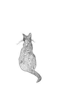 De Indiase kat van MishMash van Heukelom