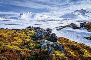 IJsland landschap van Jasper den Boer