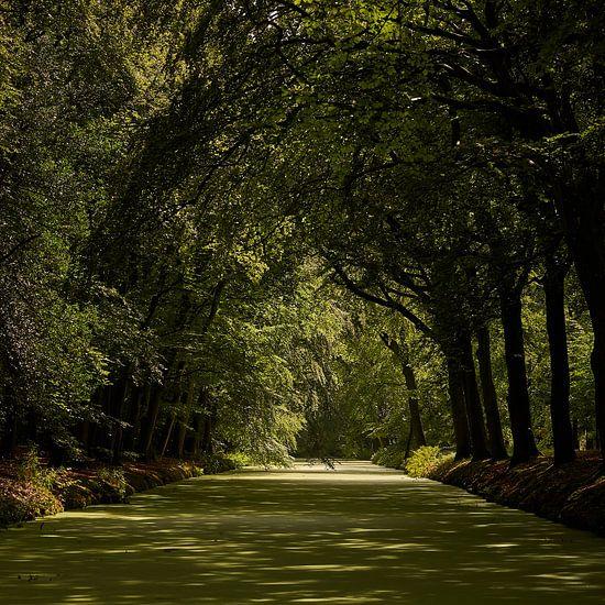 Feeling green van Gerard Oonk