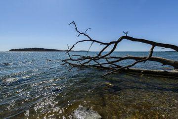 Naturstrand in der Goor, Lauterbach auf Rügen von GH Foto & Artdesign