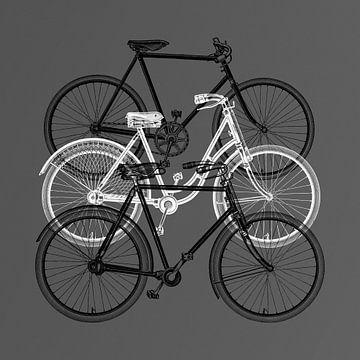 Meyers Bikes – on grey version