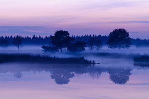 Strabrechtse Heide 155