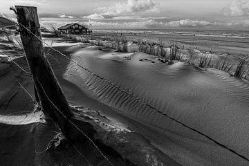 Zee en zo van Peter Heins