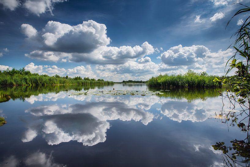 Spiegelung der Wolken in Ankeveense Plassen von Frans Lemmens