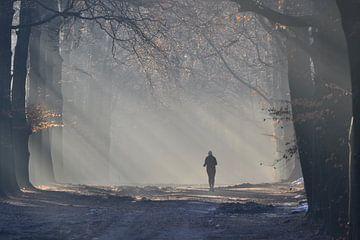 Hardlopen in de mist von Sammie van der Hooft