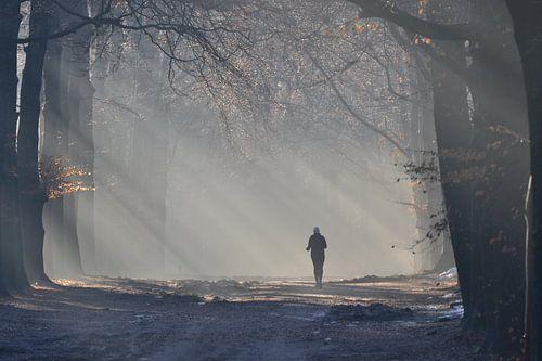 Hardlopen in de mist