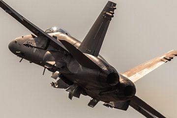 F-18 Superhornet sur Nildo Scoop