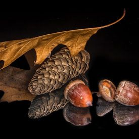 Herfst von Willem  Bentink