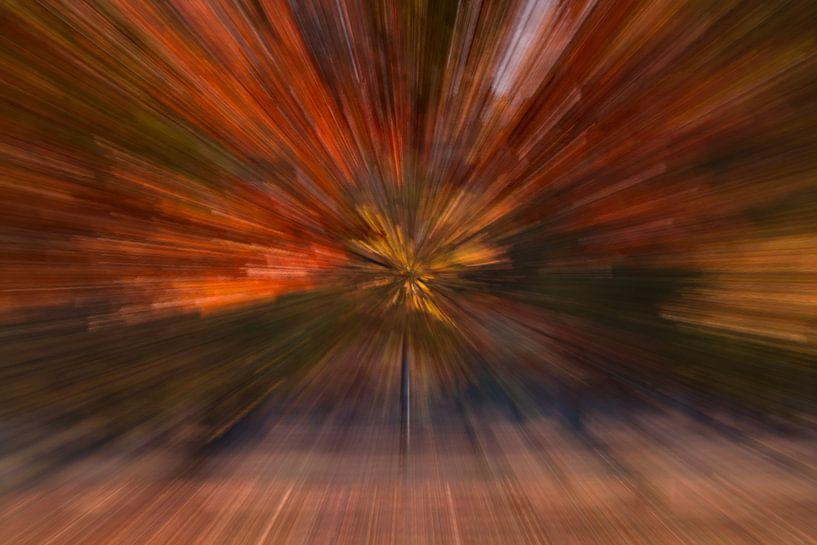 Kleur explosie van Ronald Stultiens