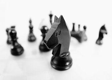 Schach von Falko Follert