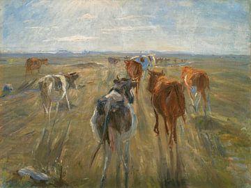 Lange Schatten. Rinder auf der Insel Saltholm, Theodor Philipsen
