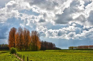 Wolken boven Voorne van Frans Blok