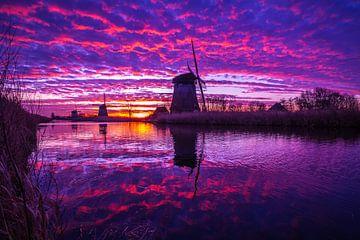Purplesky von Peter Heins