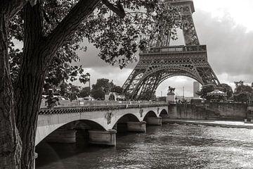 De Eiffeltoren aan de Seine van