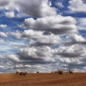 zomerwolken van Yvonne Blokland