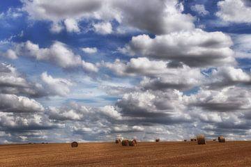 Sommerwolken von Yvonne Blokland