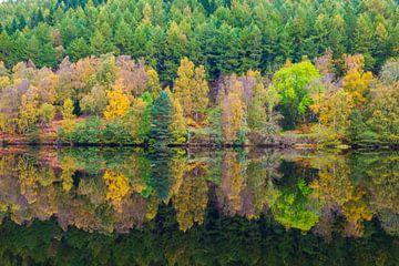 Herfst in spiegelbeeld van Erwin van Liempd