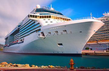 Luxe cruiseschip van Yevgen Belich
