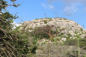 Uitzicht op Bonaire. van Silvia Weenink