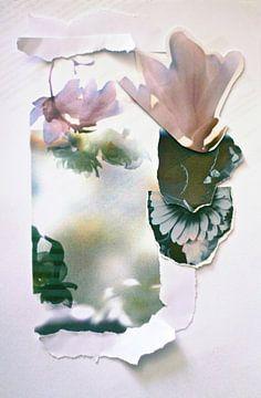 Collage Malva sur Marianna Pobedimova