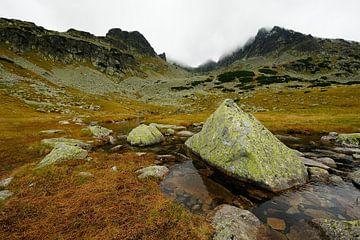 Tatra berglandschap in Polen von Merijn van der Vliet
