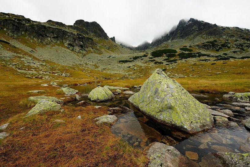 Tatra berglandschap in Polen van Merijn van der Vliet