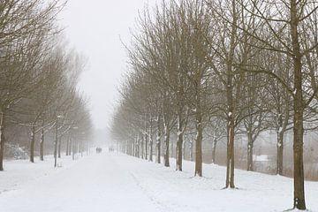 Winterweg von Rosalie Broerze