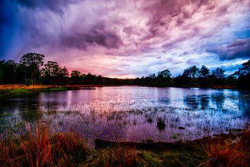 Ven Strabrechtse Heide Brabant in der Abenddämmerung von Noud de Greef