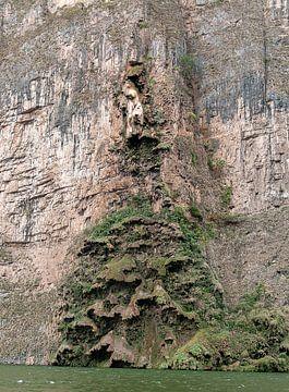 Tuxtla Gutiérrez: Cañón del Sumidero National Park von Maarten Verhees
