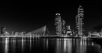 Famous Skyline of Rotterdam van Peter Hooijmeijer