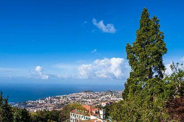 Gezicht op Funchal op het eiland Madeira, Portugal van Rico Ködder