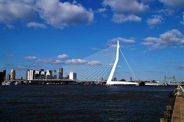 Erasmusbrug / Erasmusbridge Rotterdam van Maurits Bredius