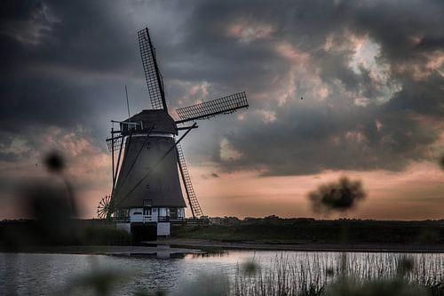 Molen Texel Het Noorden van