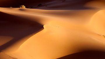 De Schoonheid van Zand van Dirk Huijssoon