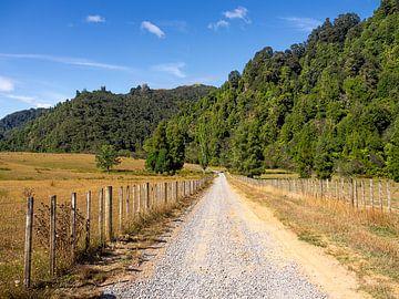 Typerend landweggetje in Nieuw-Zeeland van Rik Pijnenburg